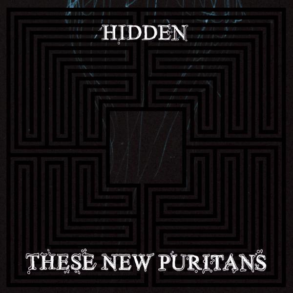 These new puritans taldearena da, New Musical Express aldizkariaren ustez, 2010eko diskarik onena
