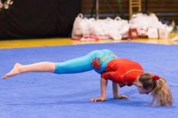 vc-zvolena-2016-fitness-21