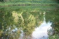 jazierko-zrkadlenie