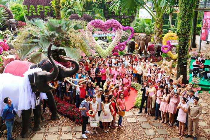 Nong-Nooch-Tropical-Botanical-Garden-in-Pattaya-marks-Valentine's-Day-by-hosting-the-marriage-of-99-couples-and-the-marriage-of-2-elephants-aged-12,18
