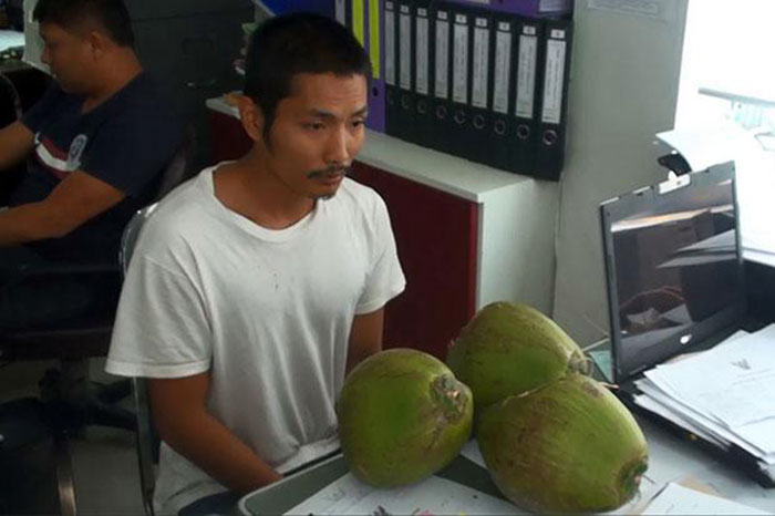 Naruebet-Phetchumpol,-25,-is-interrogated-by-police-on-Saturday-for-stealing-three-coconuts-for-his-pregnant-wife