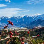 Alternativ im Allgäu – Auf Schneeschuhen zur Veggie-Hütte
