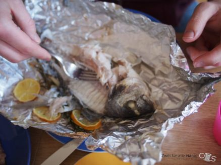 Tote Fisch schmeckt lecker(so unser Jüngster)