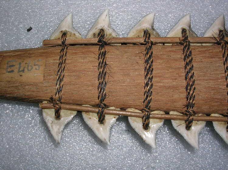 spada denti di squalo