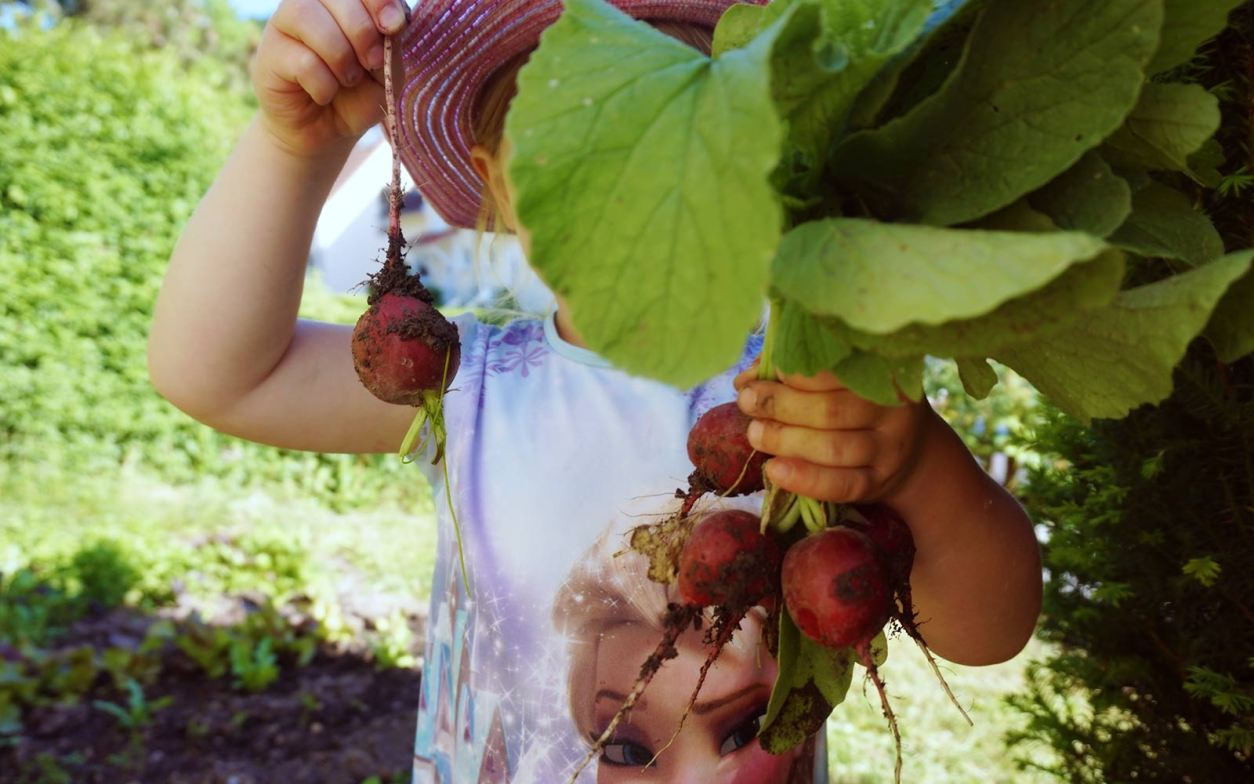 Kindern Obst- und Gemüsesorten beibringen - zweitöchter
