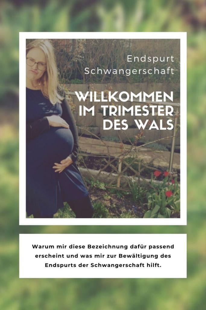 Endspurt Schwangerschaft: Willkommen im Trimester des Wals - zweitöchter