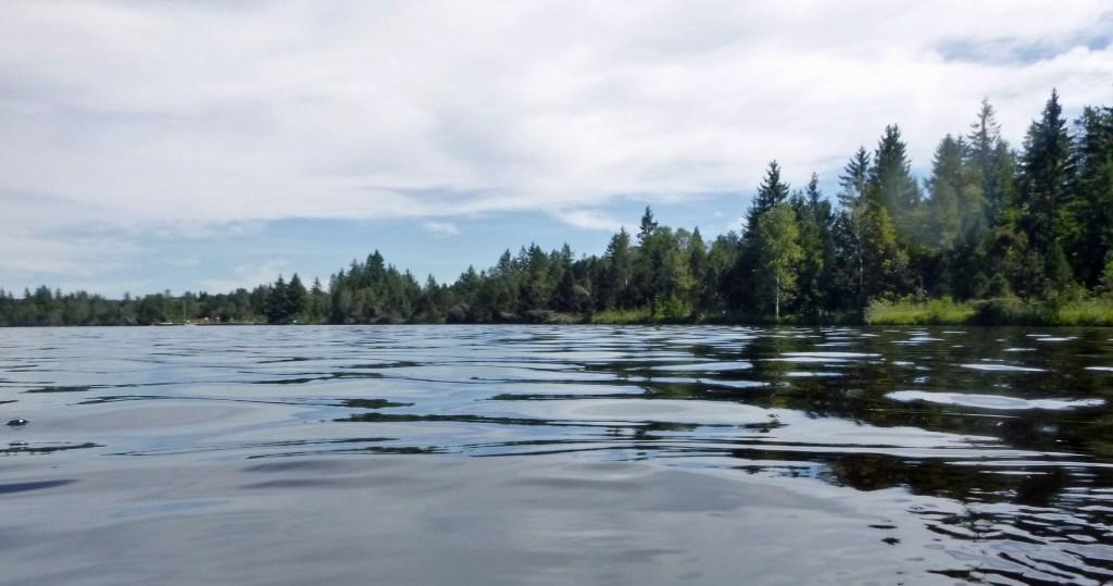 Kirchsee - Ufer im Südwesten