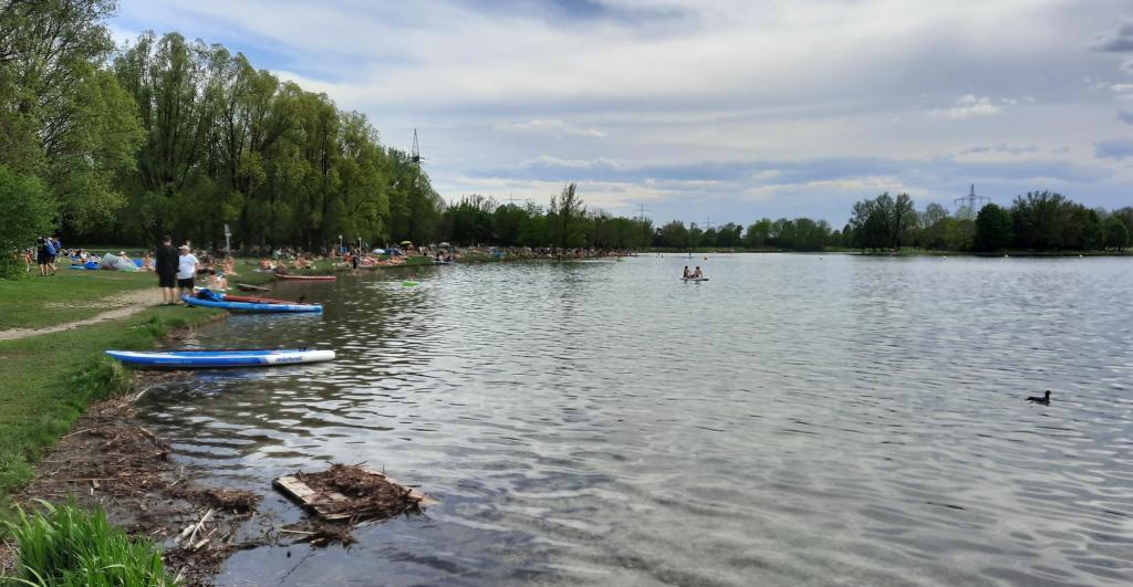 Anschwimmen im Feringasee