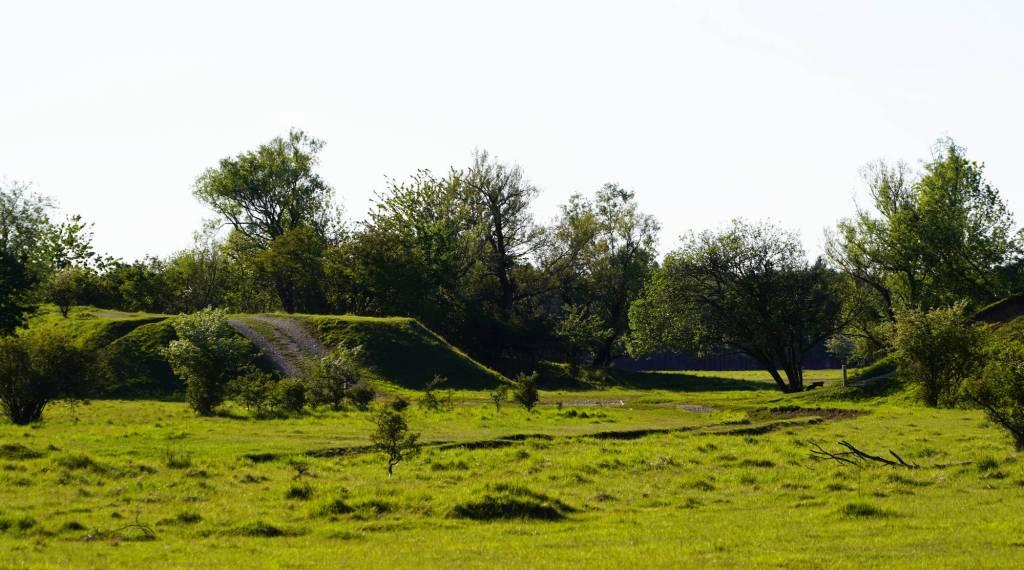 Flakhügel in der Fröttmaninger Heide