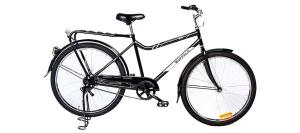 The WBR Buffalo Bike