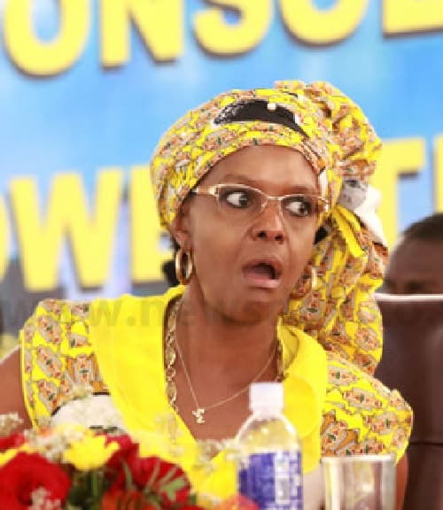 Grace Mugabe was a ghost student: Court Told