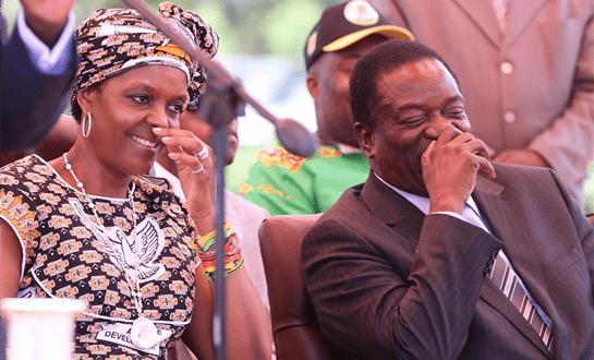 grace mugabe destroying zanu pf zwnews.com