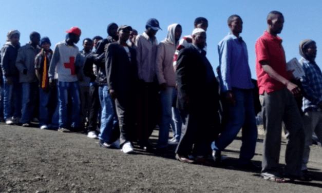 Mozambique: 64 Ethiopian illegal immigrants die in cargo container