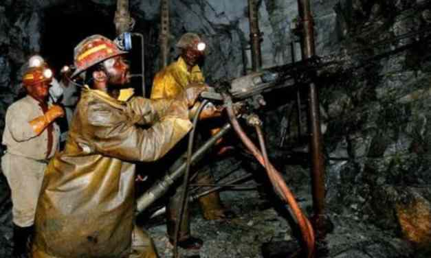 Rio Zimbabwe stops operations as RBZ forex fight intesifies