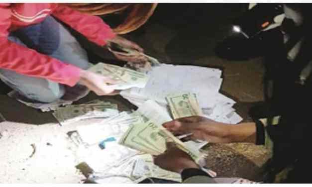 Zimbabwe money exchange rates today: 20-02-20