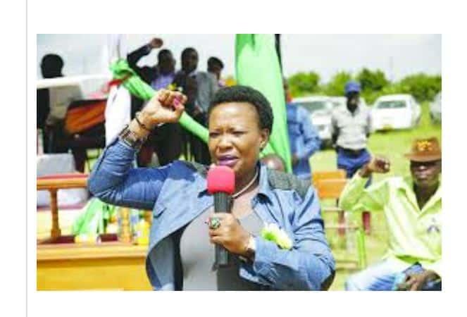 Patrick Mnangagwa, Auxillia fingered in Zanu PF fights in Midlands Province
