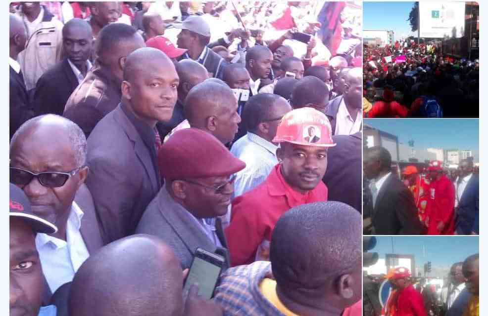 ZEC, Elections 2018: Chamisa MDC-Alliance demo march in Harare today