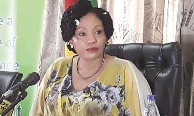 "Edmund Kudzayi ""Baba Jukwa"" deletes 2018 election rigging video"