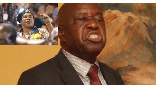 Mutsvangwa-Chimene tiff and The Fall of  Mugabe