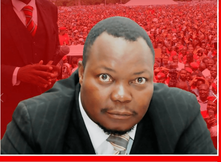 You can silence other people but not Job Sikhala: ED warned