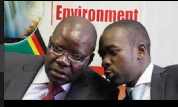 …VIDEO…Chamisa's party hints on name change