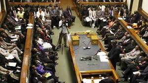 Technical glitches dog Parly inaugural virtual sitting