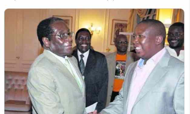 'A clueless ideological amoeba, Mnangagwa is pi***ng on heroes graves,'  EFF