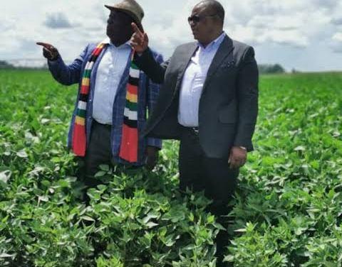 KWEKWE AGREEMENT: Zim's Mnangagwa offered safe exit passage?– Report