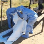 Zim health care worker suffers stroke, dies after taking Sinopharm Covid vaccine – Team Pachedu