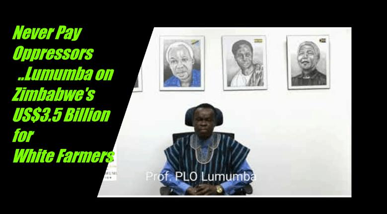 VIDEO: PLO Lumumba attacks Mnangagwa as Zimbabwe compensate white farmers