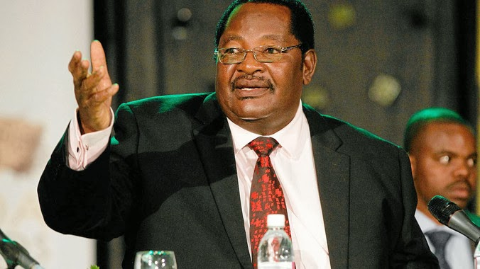 'Zimbabweans' in other countries to blame- ZANU-PF
