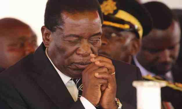 Jonathan Moyo blames Mnangagwa for the covid-19 carnage in government