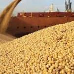 GMB speaks on maize, soya beans side marketing