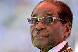 Tempering with Mugabe's 'body' will have consequences, says Mnangagwa's staunch admirer, ex-ZANU PF MP