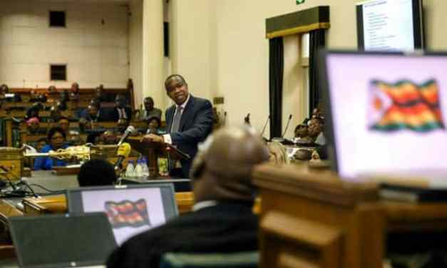 Key highlights from Finance Minister Ncube's budget review