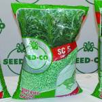 Gvt programs, good rains push Seed Co maize seed sales up by 61%