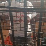 MDC-A youths arrested doing door to door register to vote campaign in Chitungwiza- party