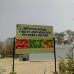 PICTURES: President Mnangagwa dates Mutoko, to launch Agro processing plant