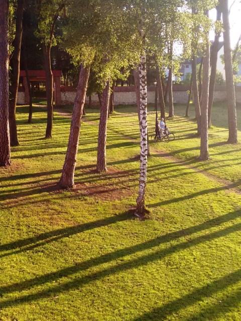 Park przy klasztorze w Krasnobrodzie