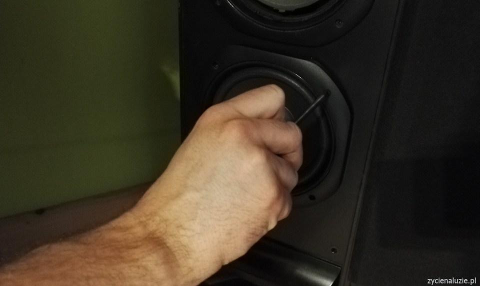 Renowacja głośników 16