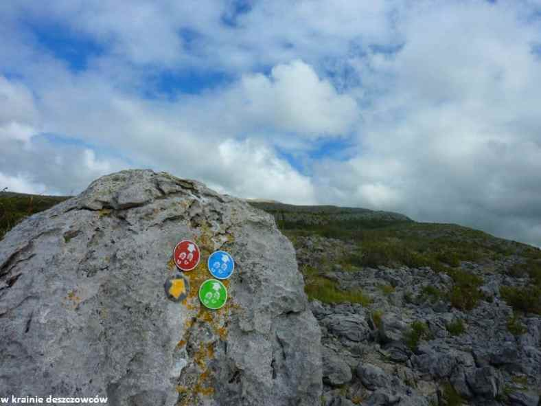 Mullaghmore Loop, Burren (12)