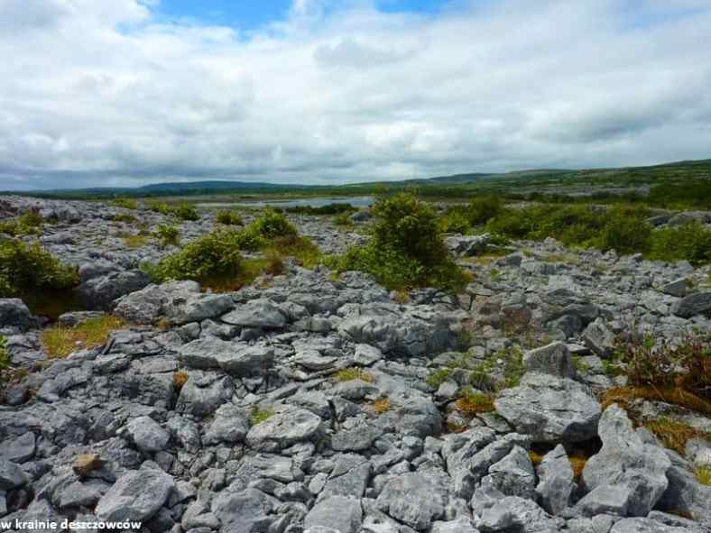 Mullaghmore Loop, Burren (9)