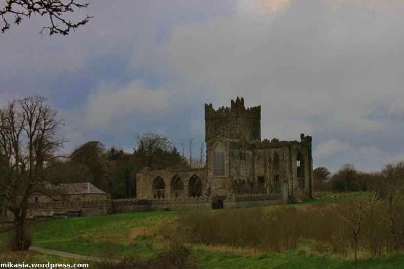 Tintern Abbey (6)