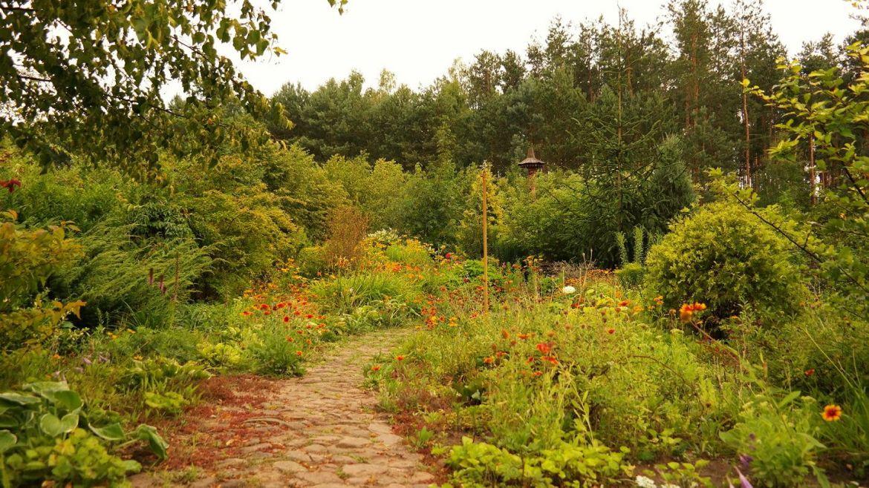 Ogród Albiczuka