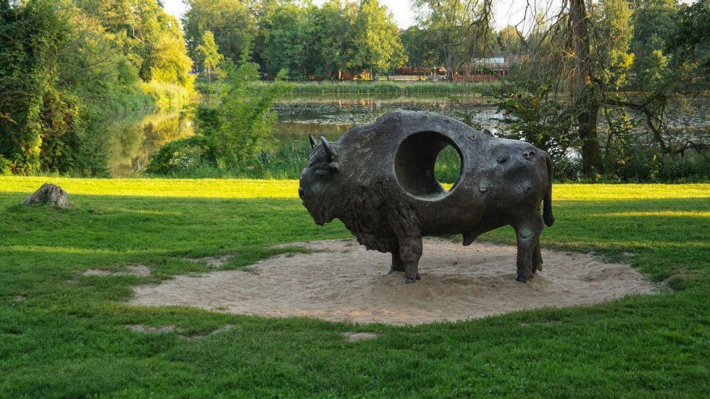 żubr Park Pałacowy Białowieża