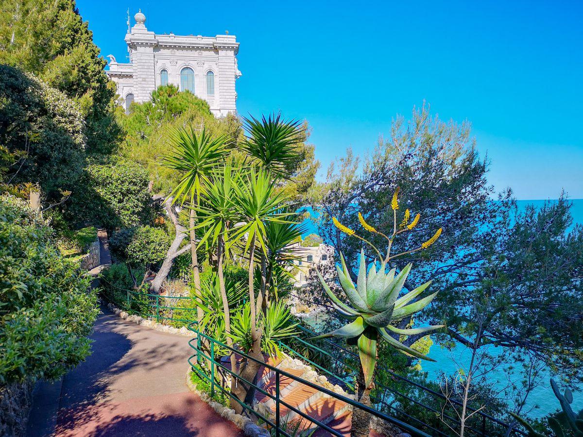 Monako co zwiedzić i zobaczyć w Monako monaco Park Saint-Martin widok na oceanarium
