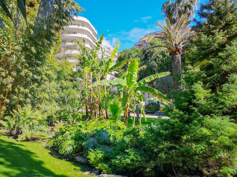 Monako co zwiedzić i zobaczyć w Monako monaco park centrum egzotyczny park miejski