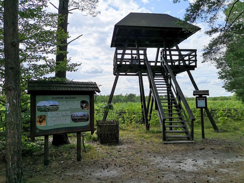 durne bagno wieża widokowa lubeslkie na weekend blog co zwiedzić i zobaczyć gdzie pojechać