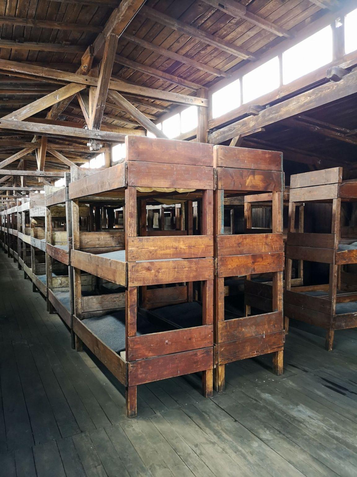 majdanek obóz nazistowski lublin prycze baraki