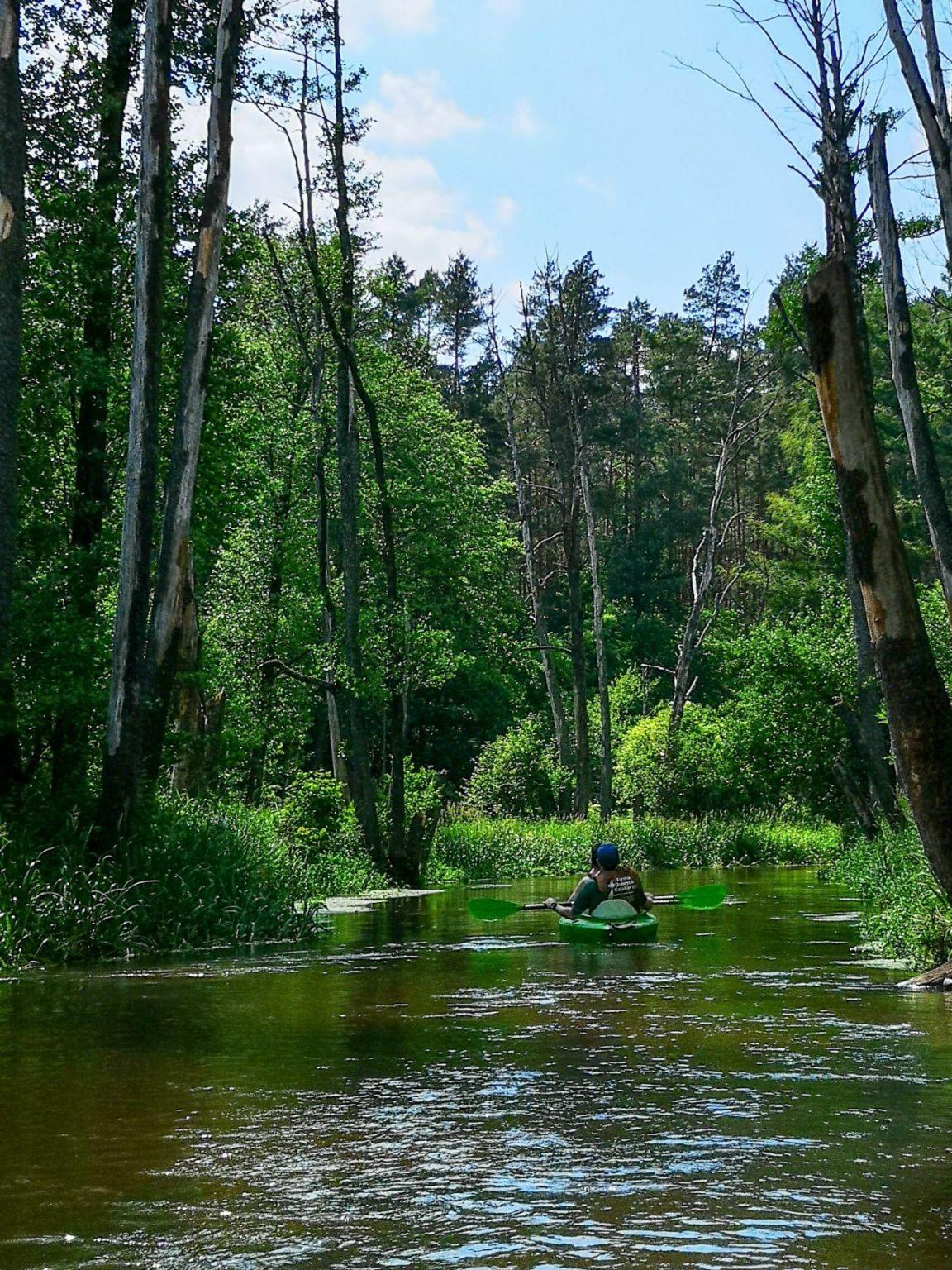 spływy kajakowy roztocze weekend lubelskie aktywnie